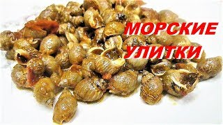 МОРСКИЕ УЛИТКИ рецепт/Maruzzielli  Lumache  di  Mare/Cook Snails(, 2015-11-30T15:33:28.000Z)