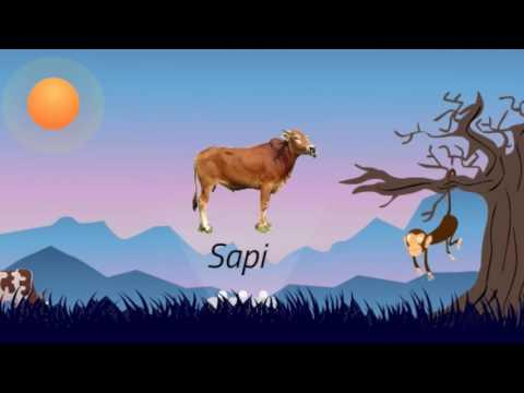Persebaran Fauna di Indonesia 2