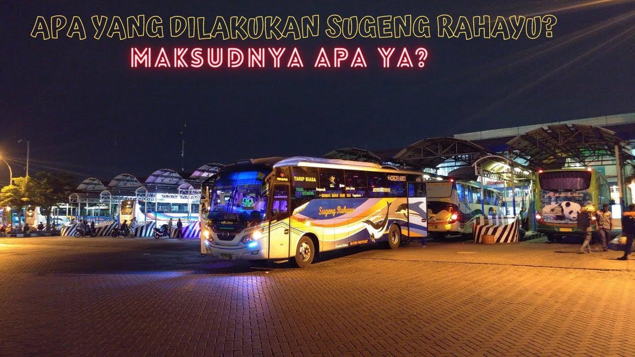 Kok Begini? Apa yang Dilakukan Sugeng Rahayu di Terminal Surabaya?