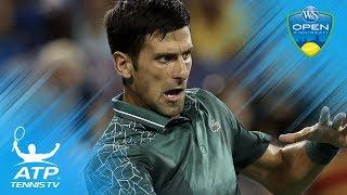 Attack of the? Djokovic Survives Insect Attack in Cincinnati