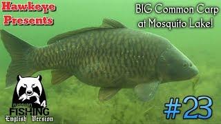 Russian Fishing 4 | #23 - BIG Common Carp at Mosquito Lake!