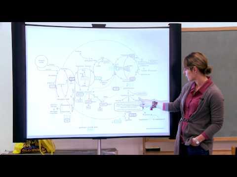 Dr  Pratt Talk At The Blue Rock School