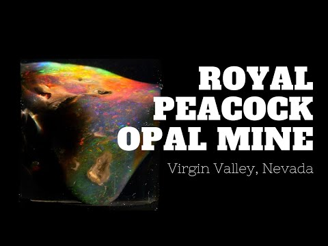 A Brief History Of The Royal Peacock Opal Mine