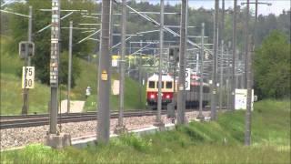 Re 4/4 I 10034 TEE zwischen Eglisau und Glattfelden