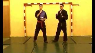 Рукопашный бой, 1 год обучения удары борьба приемы Ч2(Клуб Рукопашного боя