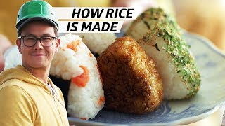 How Rice Is Farmed, Milled, and Packaged at Koda Farms