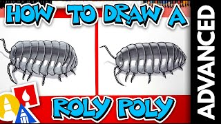 How To Draw A Realistic Roly-Poly Pill Bug - Advanced