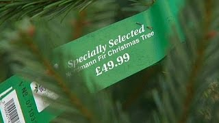 Рождественские ели в Великобритании подешевели, но не для потребителей - economy(Рождественские ели в этом году обойдутся британским ритейлерам дешевле. Главные традиционные атрибуты..., 2015-12-07T21:01:11.000Z)