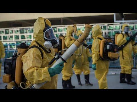 Массовое заражение мигрантов коронавирусом