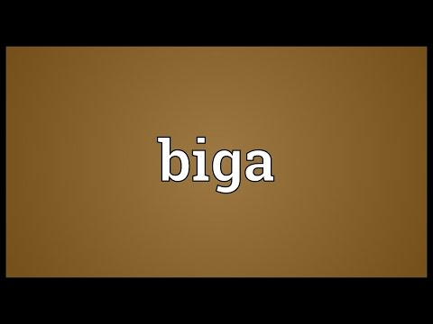 Biga Meaning