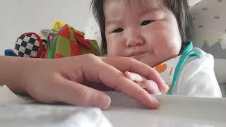 초기이유식 인생 141일차 이유식