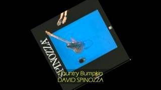 David Spinozza - COUNTRY BUMPKIN