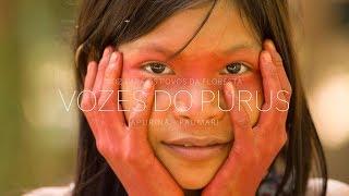VOZES DO PURUS  - Voz para os povos da floresta [4K]