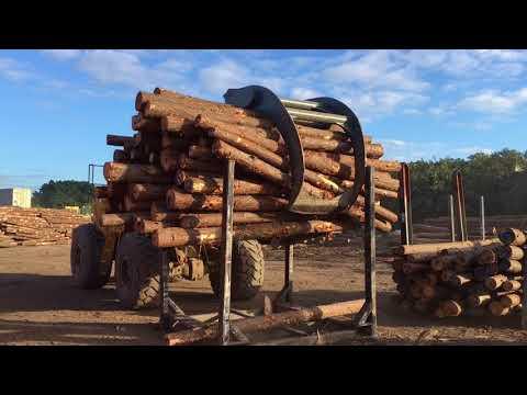 Log Export Packing - near Port of Brisbane