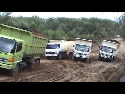 Isuzu Trucks around the World