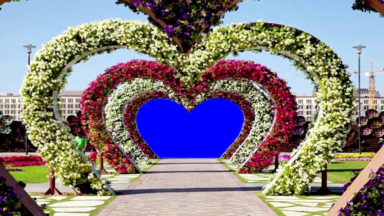 Free Hd Stock Footage Blue Motion Background Free Wedding Background Youtube
