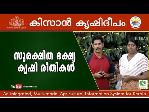 Safe to eat food. A self cultivation by well educated couple in Idukki