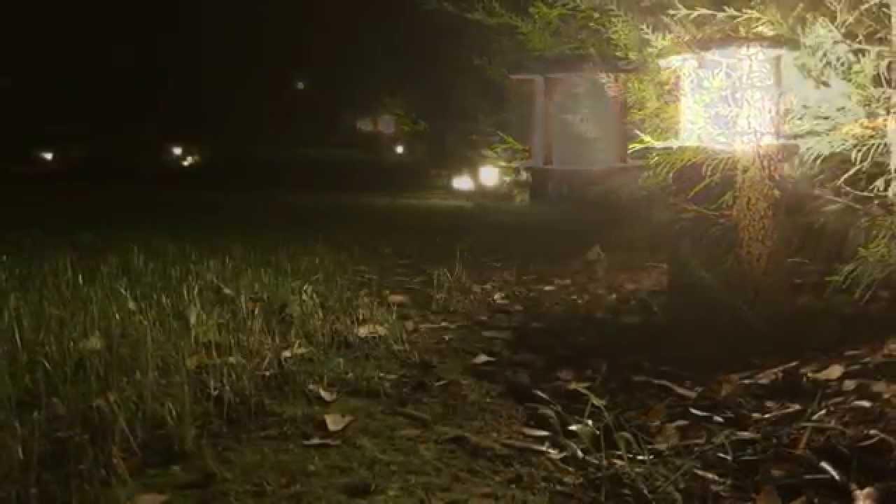 Iluminación exterior para todo tipo de jardines - YouTube