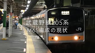 武蔵野線で活躍する205系M65編成 thumbnail