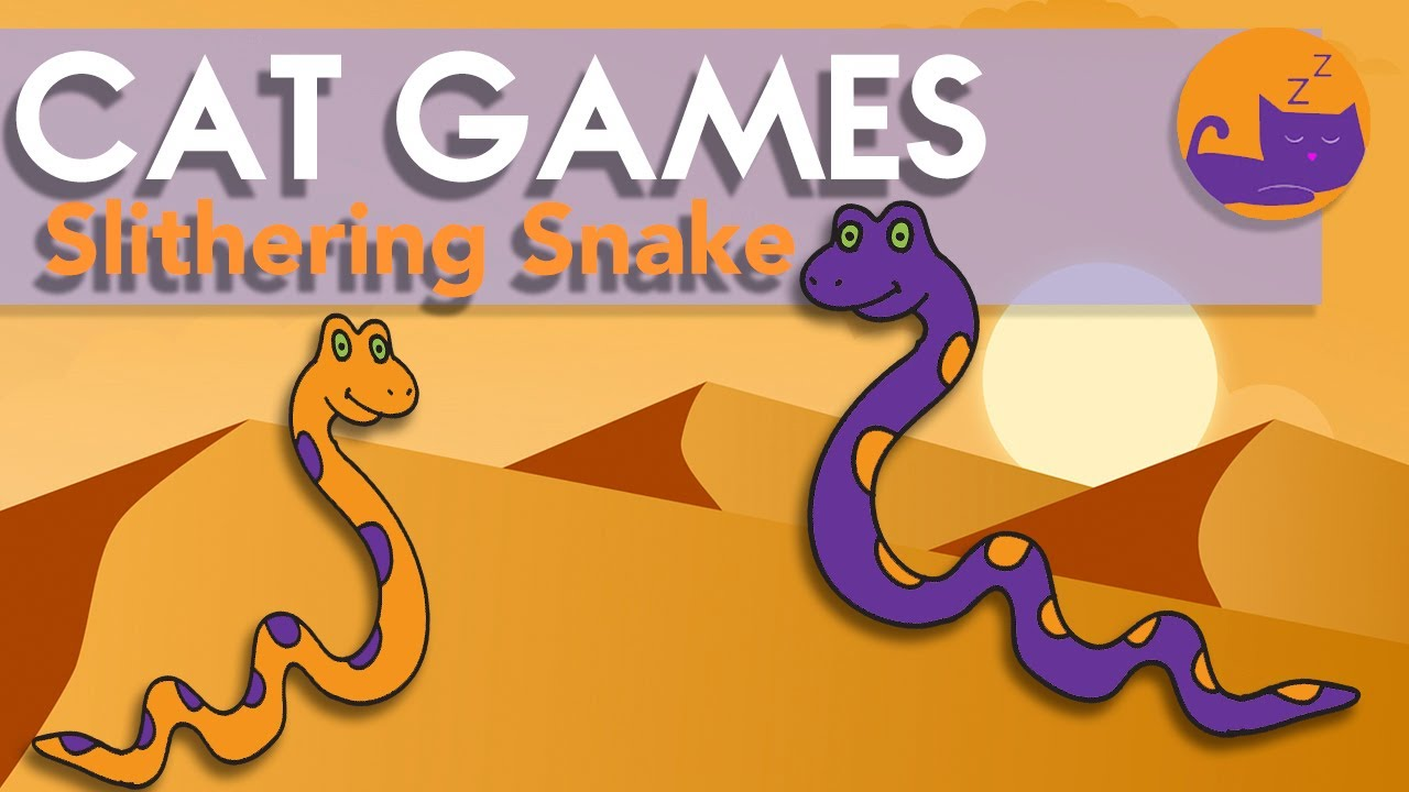 Games for Cats - Slithering Snake Chase! (ALL NEW)