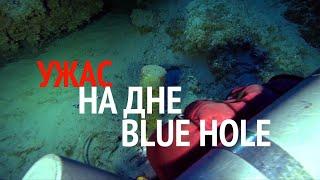 Ужас на дне Blue Hole/ Horror at the bottom of blue hole | 114 м глубина/ 114 m depth