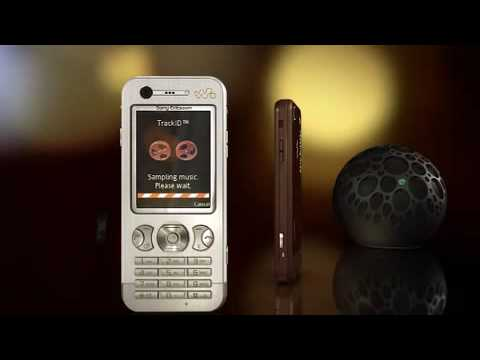 Sony Ericsson W890i Overview