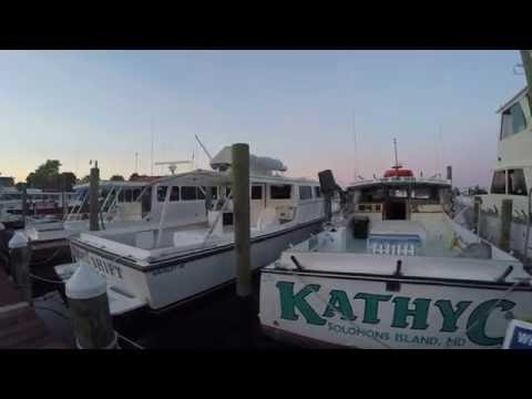 Solomons, Maryland - Chesapeake Bay Fishing - Bunky's Charter Boats