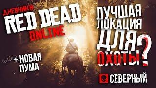Лучшая локация для охоты в Red Dead Online | БЕСКОНЕЧНЫЕ ДЕНЬГИ