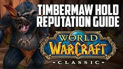 Classic WoW Timbermaw Hold Reputation Guide