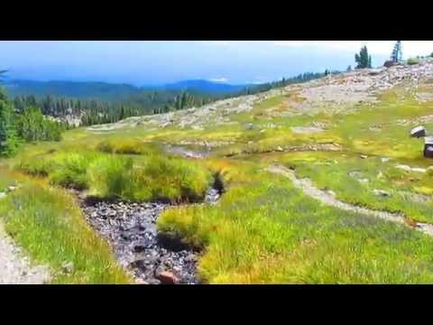 Hiking on Mount Shasta; Squaw Meadow Trail