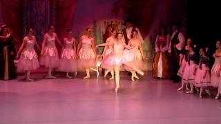 Sleeping Beauty-Act I