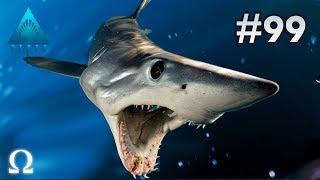 fastest-shark-of-the-sea-mako-orca-depth-99-divers-vs-sharks-ft-cartoonz