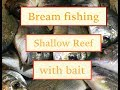 How to catch bream, fishing with bait.