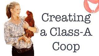Backyard Chicken Episode 5: Designing Or Buying A Coop