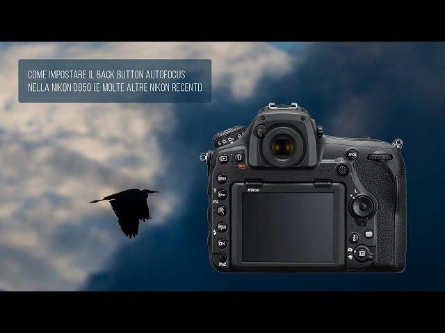 Come impostare il Back Button Autofocus nella Nikon D850 (e molte altre Nikon recenti)