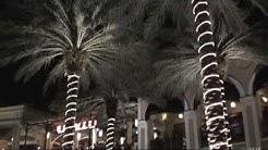 West Palm Beach Citi Place Florida