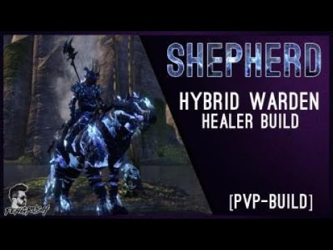 Eso Warden Stamina Healer Build