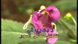 Arabic Karaoke: Georges Wassouf Ya Bayya3in El Hawa