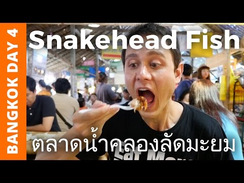 Snakehead Fish at Khlong Lat Mayom Floating Market - Bangkok Day 4