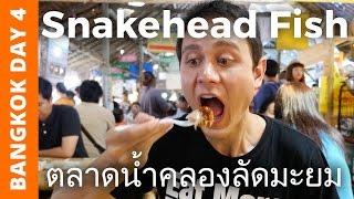 Snakehead Fish at Khlong Lat Mayom Floating Market - Bangkok Day 4