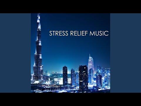 Top Tracks - No Stress Ensemble