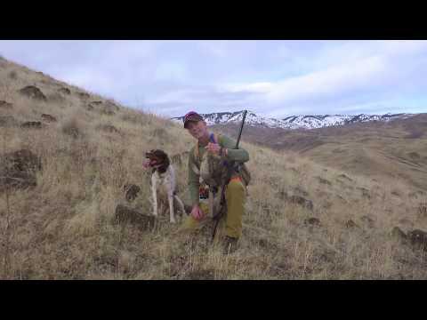 Chukar Hunting in January