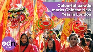 Colourful parade marks Chinese New Year in London