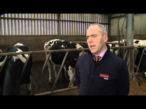 GAIN Beef Feeds - Introducing Alltech and Carneo technologies