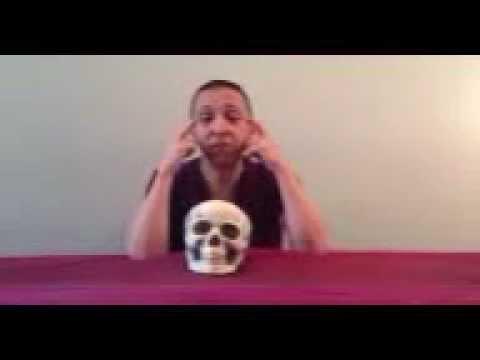 sphenoid release i - youtube, Human Body