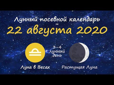 [22 августа 2020] Лунный посевной календарь огородника-садовода
