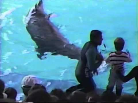 Sea World of Ohio 1990
