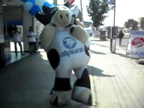 vaca alpura bailando cow dance amazing.mp4