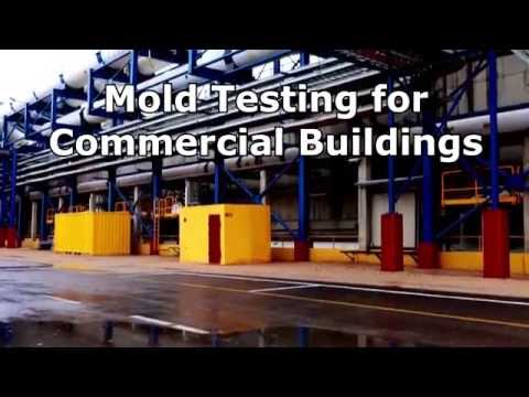 commercial-mold-testing---mold-testing-for-commercial-buildings