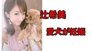 ブログ:https://blog.with2.net/link/?1944366 辻希美 1歳3カ月の愛...